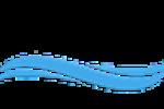 Holistic Qigong Foundation Logo